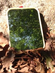 Mirror camp - 1