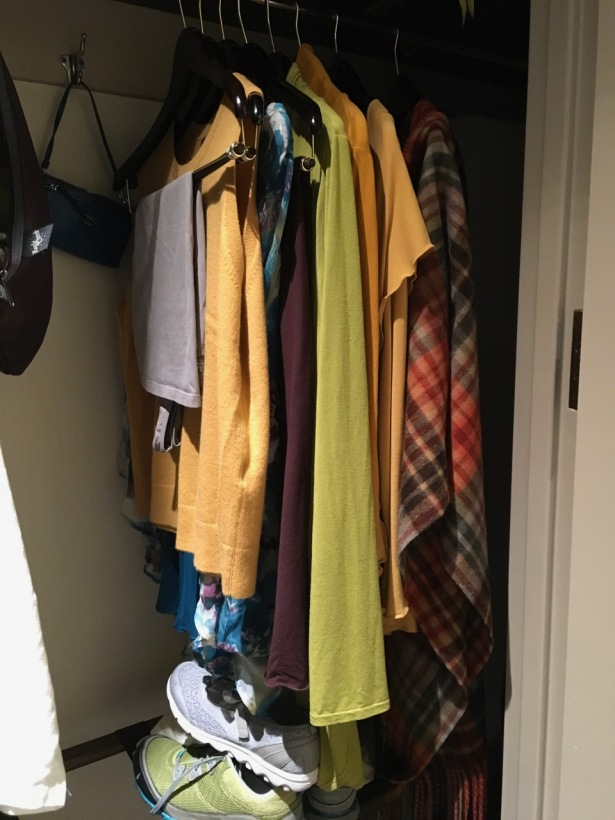 SF wardrobe in closet - 1
