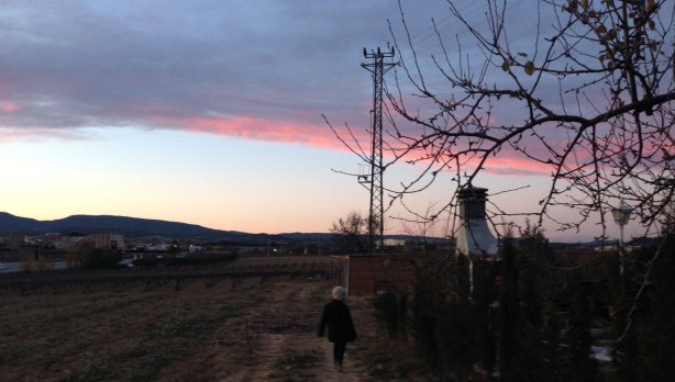 Child walking into winter sunset in rural Spain