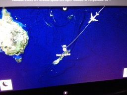 NZ flight map on monitor - 1