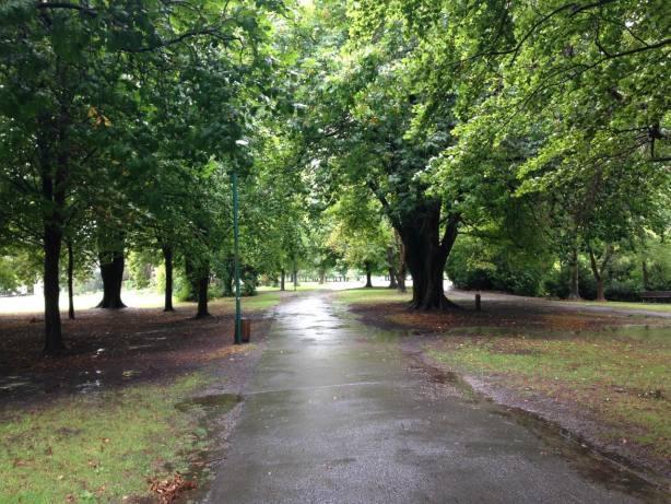 NZ Hagley Park empty in rain - 1