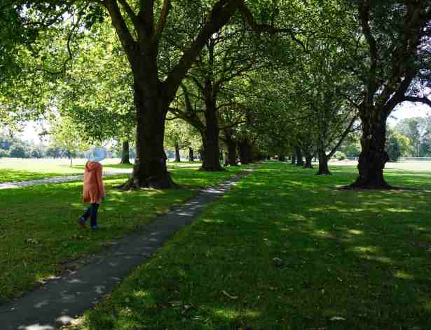 NZ Hagley Park me walking