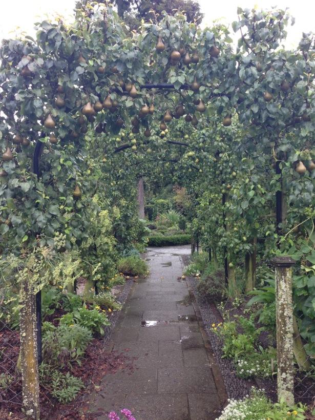 NZ trip fruit arbor irresistable