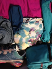 Teal, Ocean and Violet Angelrox with Ahnu and Tom Bihn in teal