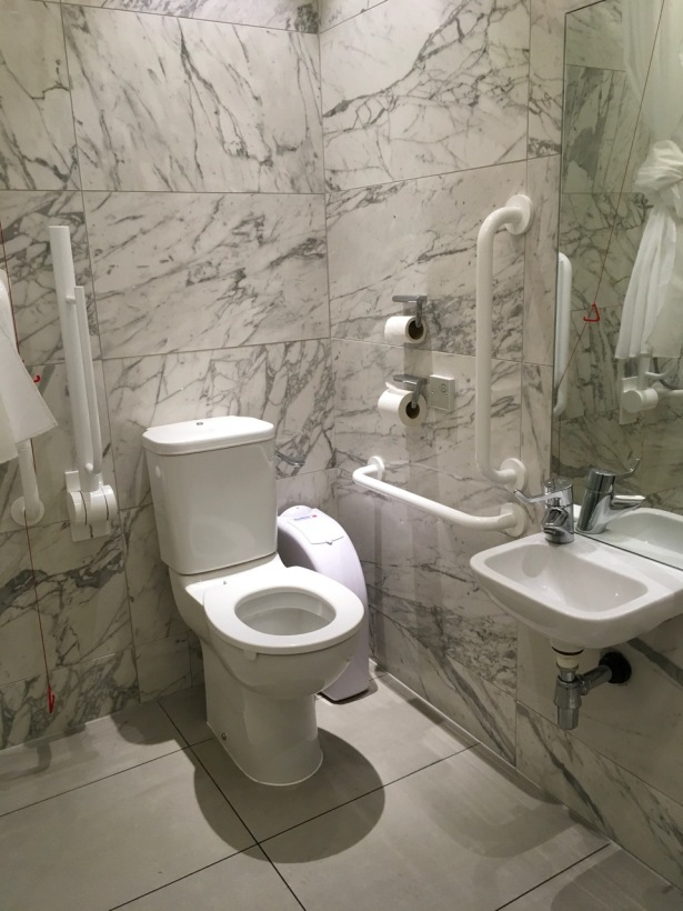 Bathroom fitted with accommodations for physical disabilities