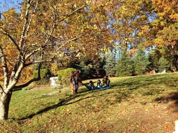 Children play amongst colorful leaves on a sunny autumn day