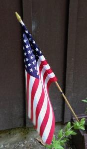 USA flag - 1