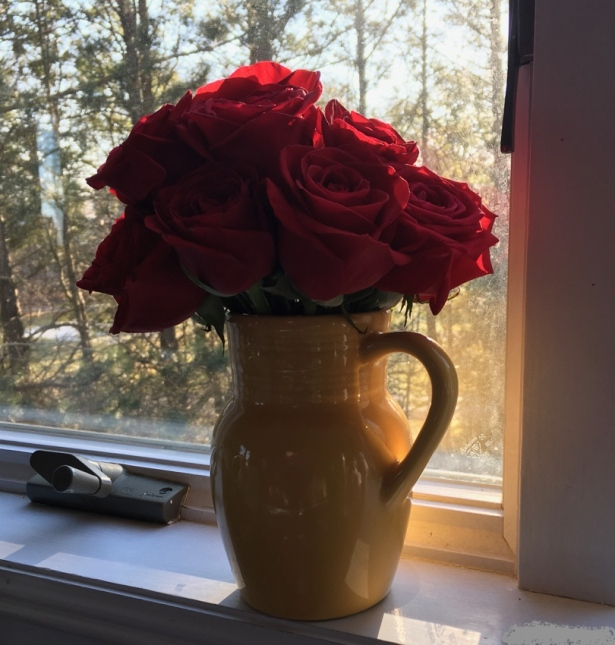 Dozen red roses in yellow ceramic pitcher on windowsill