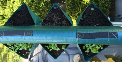 Herbs planted in soft sided pockets hung on balcony railing
