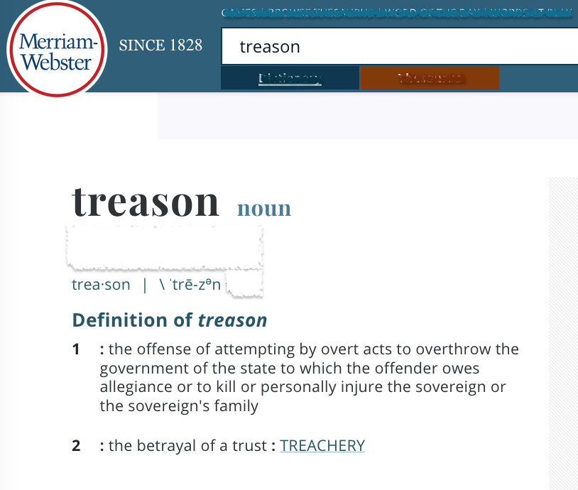 Merriam Webster dictionary definition of treason from website